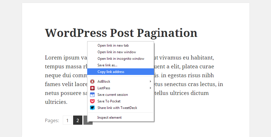 Pagination Copy Link Address
