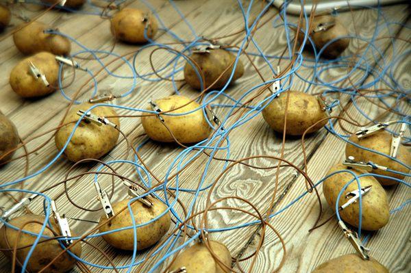 potato-battery