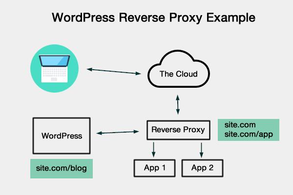 WordPress Reverse Proxy Example