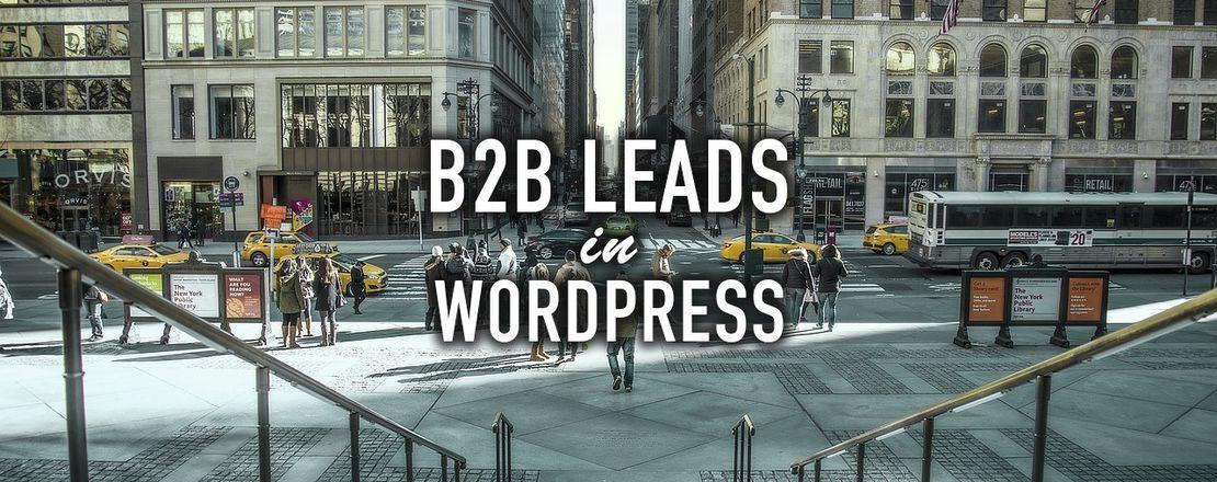 B2B Leads in WordPress