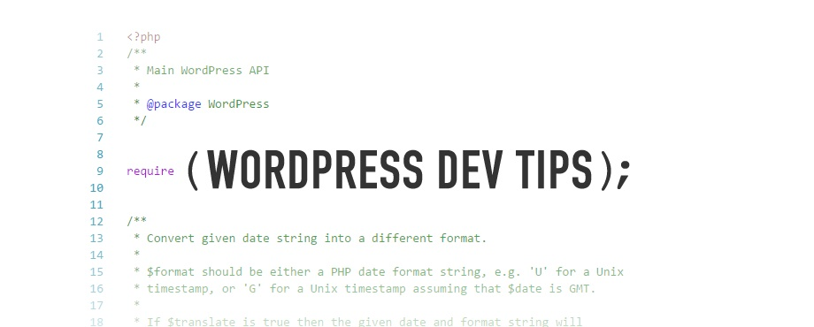 WordPress Dev Tips
