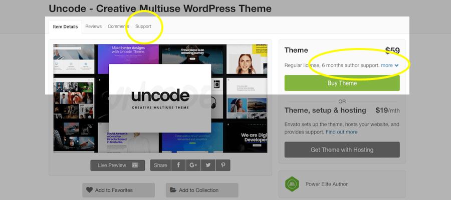 WordPress Premium Theme-support